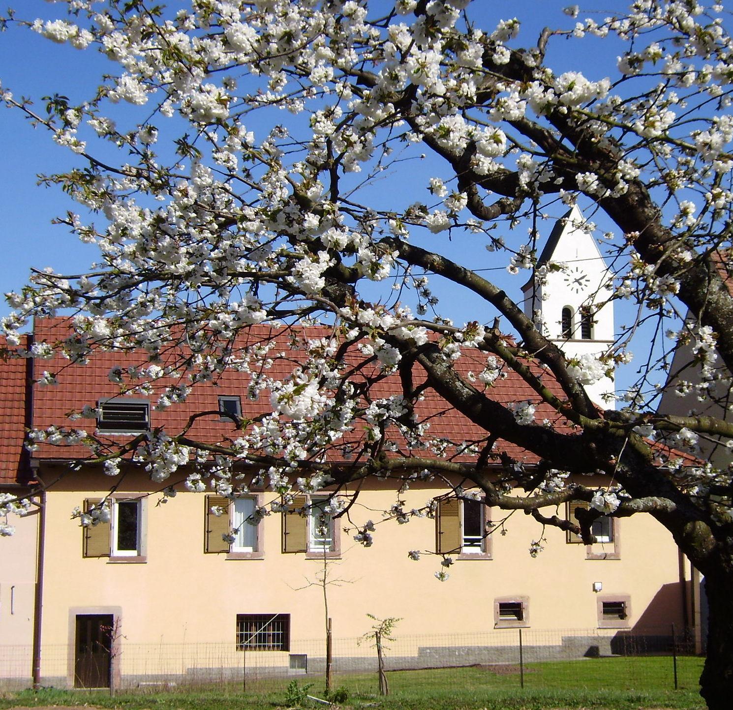 Le wineck le g te le wineck for Cote et jardin ile aux moines