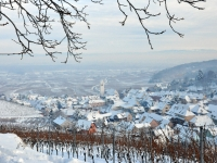 katzenthal-sous-la-neige