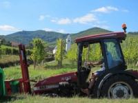 tracteur-vigneron