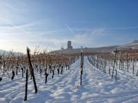 le-wineck-en-hiver